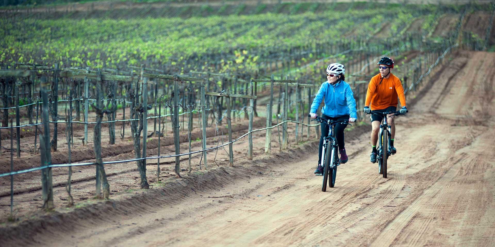 Ciclismo Baja California
